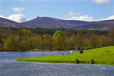 Clach Na Ben Mountain. Aberdeenshire Scotland.