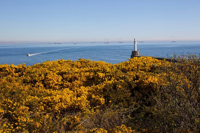 Bay of Nigg Harbour.. Aberdeen.