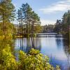 Loch of Aboyne. Aberdeenshire.