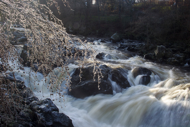 Winter has arrived. River Feugh  Aberdeenshire.