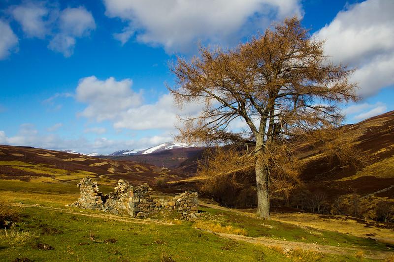Old Ruin near Braemar. Scotland