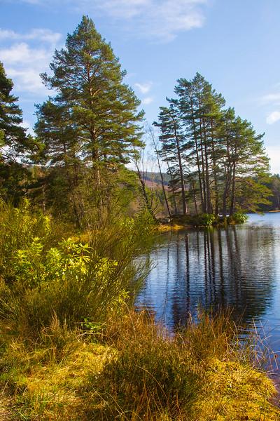 Taken at Loch of Aboyne.