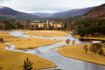 Mar Lodge in the background.Braemar Aberdeenshire.