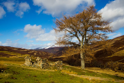 Ruin of Old Crofters House. Braemar. Scotland.