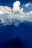 Mid-Ocean Blues