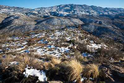 Rincon Mountains in Winter