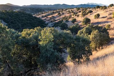 Scenic Santa Cruz County