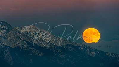 Moonset over Mt. Blanca