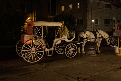 Horse and Carriage - Cape May