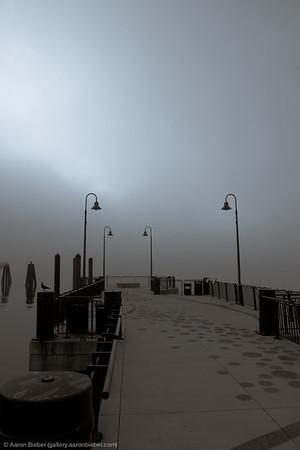 Fog, State Pier