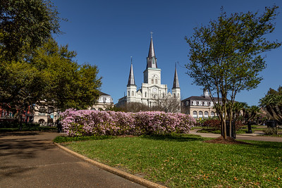 Jackson Square, March 2019-33