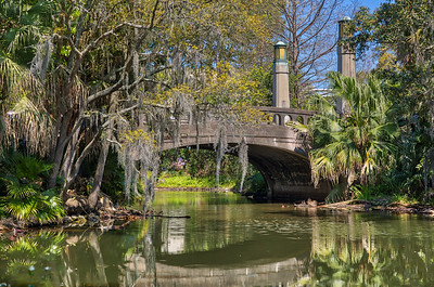 City Park NOLA  Mar 2019 - -7