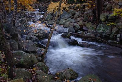 Oakwood Drive Stream - Ringwood