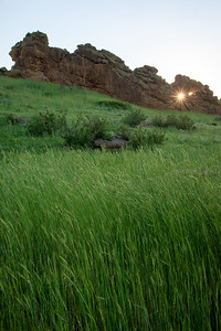 The sun breaks through a hole in the rock face at Devils Backbone Open Space in Colorado.