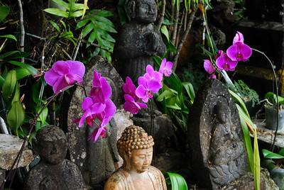 Kauai Temple