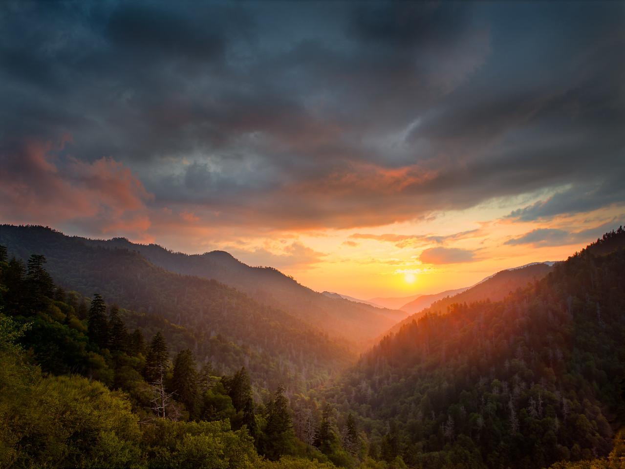 Smoky Mountain Gold