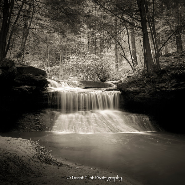 S.5241 - forest waterfall, Red River Gorge Geological Area, Daniel Boone National Forest, KY.