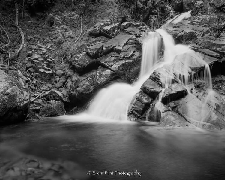S.5205 - Lower Snow Creek Falls, Kaniksu National Forest, ID.