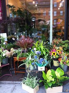 A sidewalk florist in Brooklyn on Montegue Street