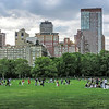 Enjoying A Summer Afternoon in Central Park
