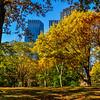 Central Park Colors