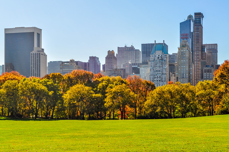 Midtown in Fall Color