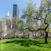 Spring in Union Square Park