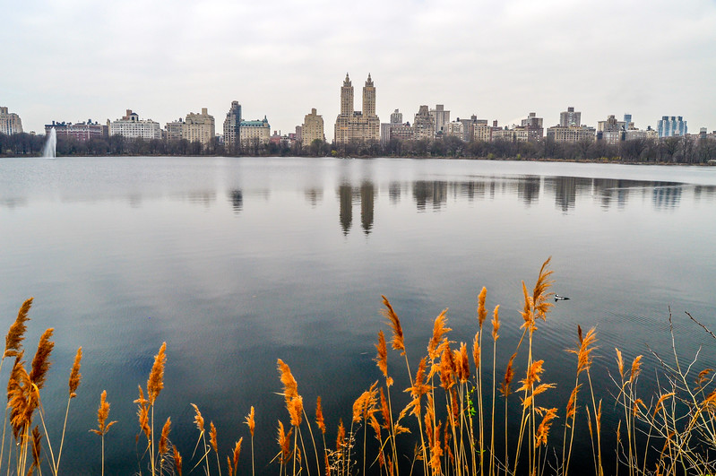 Central Park West Reflections in Water