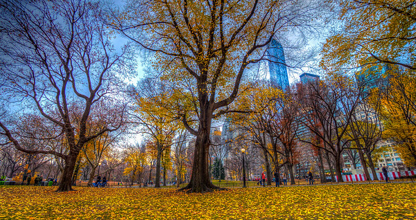 Fall in Central Park West, NYC