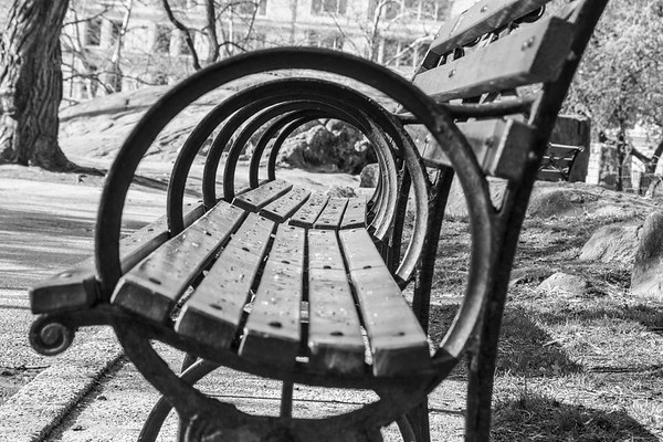 Circles In The Park