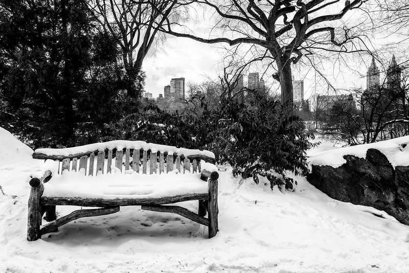 The Lone Bench, Central Park, NYC