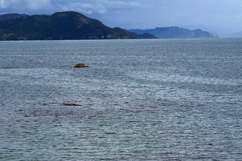 From Te Kaha Point amongst the islets during mid-flood tide - beyond to Pokohinu Point at the southwestern mouth into Omaio Bay - then Orangoihunui Point at the western mouth into Whitianga Bay - Raukumara Peninsula - Bay of Plenty region.