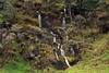 Waterfall cascading along the slope of the Mangaroa Range - Raukumara Peninsula - Gisborne (East Cape) region.