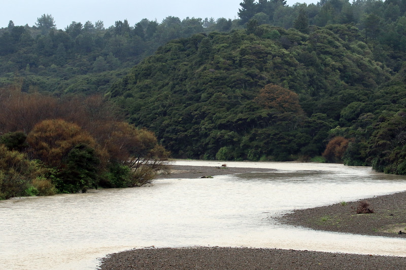 Whangaparaoa River - flowing amongst the rocky banks amongst the steep vegetated slope along the northern area of the Raukumara Range, in the Temperate Broadleaf and Mixed Forest ecoregion - the far northeastern area of the Bay of Plenty region.