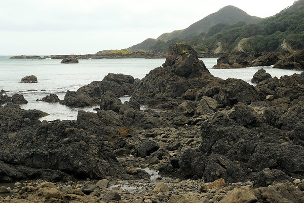 Volcanic basalt rock shoreline during late-ebb tide - beyond to the islets of Tohora pirau - and distal the peak rising up to around 472 ft (144 m) above Lottin Point (Wakatiri), the northernmost point of the Raukumara Peninsula - Gisborne (East Cape) region.