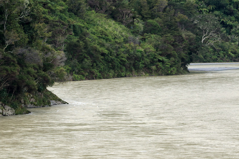 Up the Motu River, displaying the turbid water from the suspended sedimentary rock particles - Bay of Plenty region.