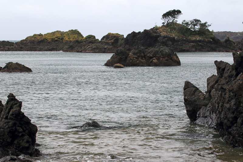 Out to the lichen cloaked volcanic rock islets at Tohora Pirau during late-ebb tide - Gisborne (East Cape) region.