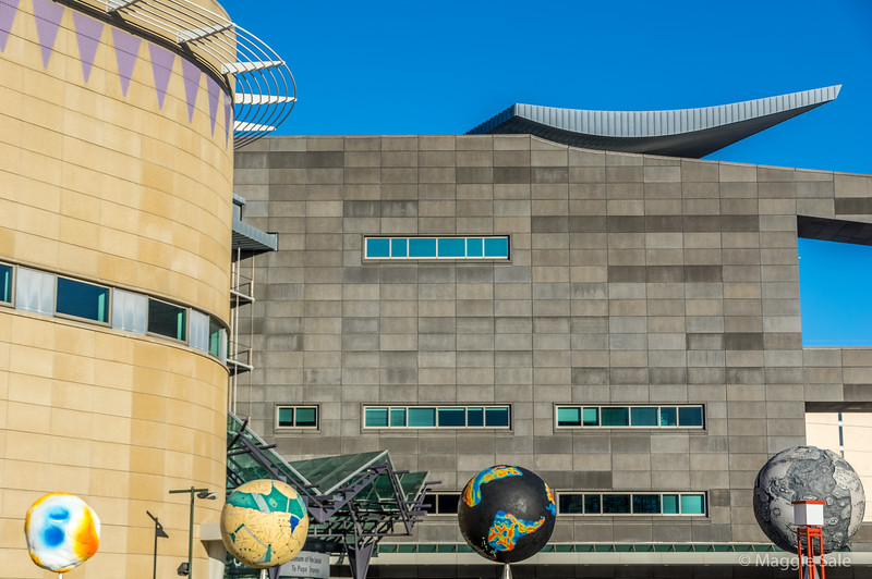 Wellington city centre. Te Papa museum which includes a large selection of Maori art.