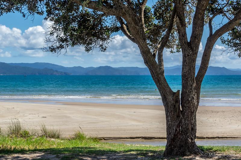 Deserted beaches on the Coromandel Peninsula