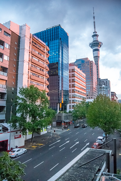 Auckland city centre. View from our hotel room