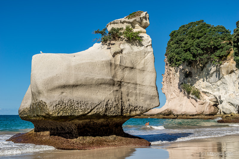 Cathedral Cove stacks - beaches on both sides of the arch