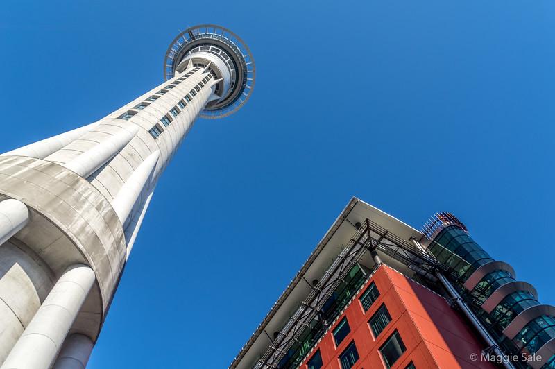 Auckland city centre, Sky Tower