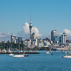 Auckland city centre from the marina