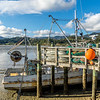 Coromandel town fishing harbour