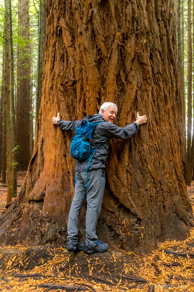 Julian hugging a Redwood!