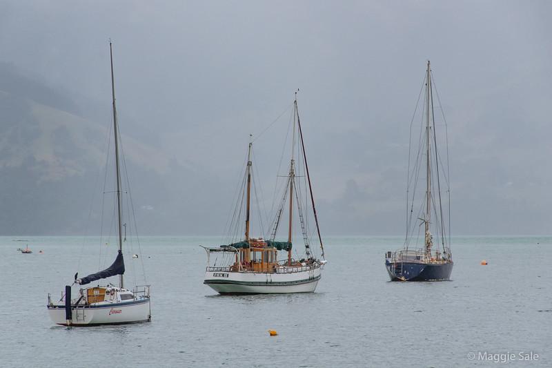 Sailing boats at Akaroa
