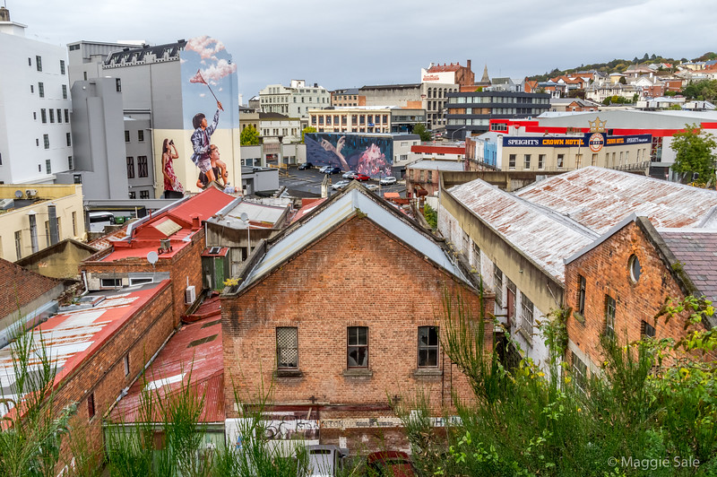Rooftops in Dunedin with some large scale wall art.