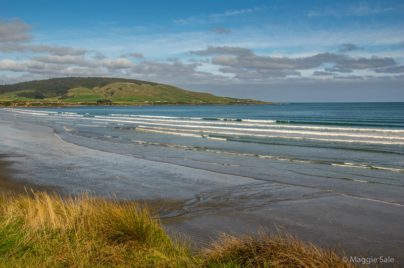 Beaches along the south coast west of Invercargill