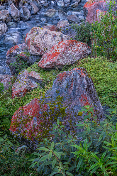 Colourful rocks near the tunnel on the Milford Road