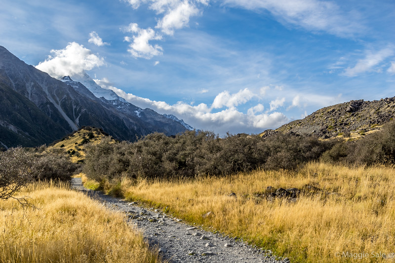 Mount Cook emerging during our glacial lake walk